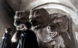 'Animales fantásticos y dónde encontrarlos' será rodada en Reino Unido