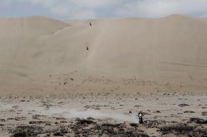 Dakar 2014: declaraciones de los pilotos de motos y quads tras la penúltima etapa