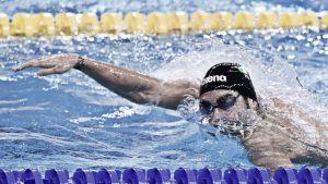 Nuoto, Doha 2014 2° Giornata: Magnini è grande, due medaglie per l'Italia
