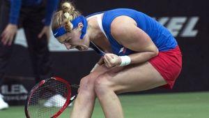 Kvitova coronó a la República Checa en la Fed Cup