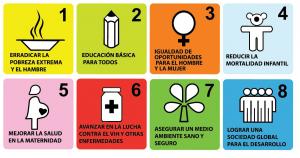 ¿Van los Objetivos de Desarrollo del Milenio por un buen camino? (I)