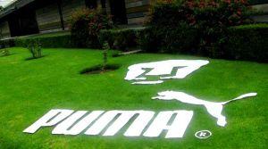 Adiós Puma: La firma deportiva alemana se despide de los Pumas