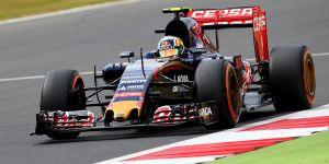 Gp di Ungheria, Toro Rosso affila le corna per Budapest