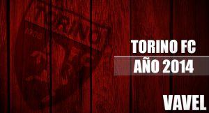 Torino FC 2014: La bipolaridad granata