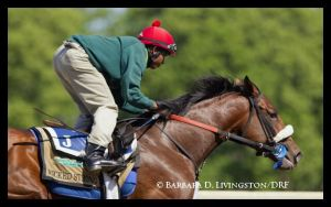 Belmont Stakes Update, June 1: More Workouts From The Top Contenders