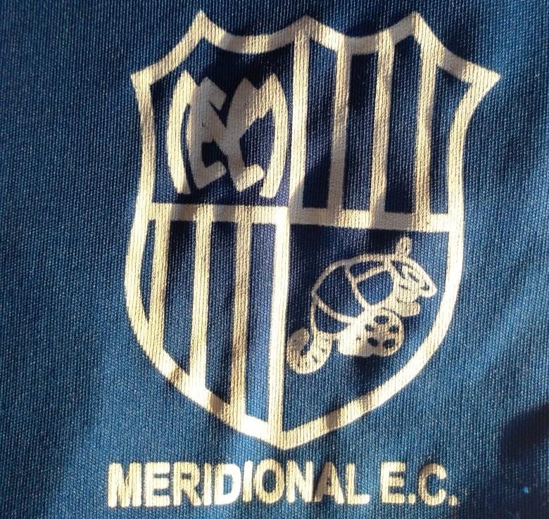 Clube de Conselheiro Lafaiete, Meridional recebe investimento para retomar futebol profissional