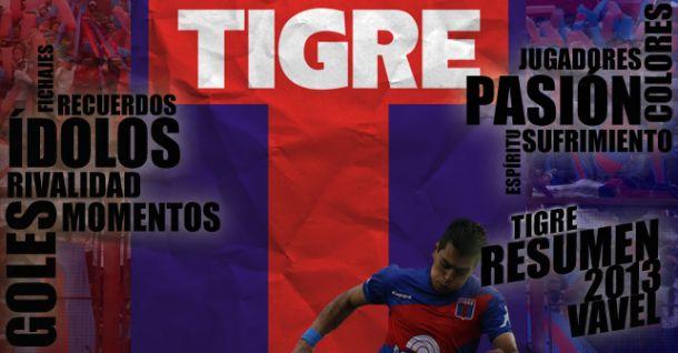 Tigre 2013: un año de vaivenes