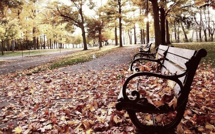 Cinco planes originales para el otoño de Madrid