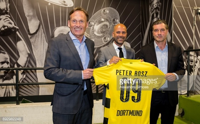 Borussia Dortmund name Peter Bosz as new head coach