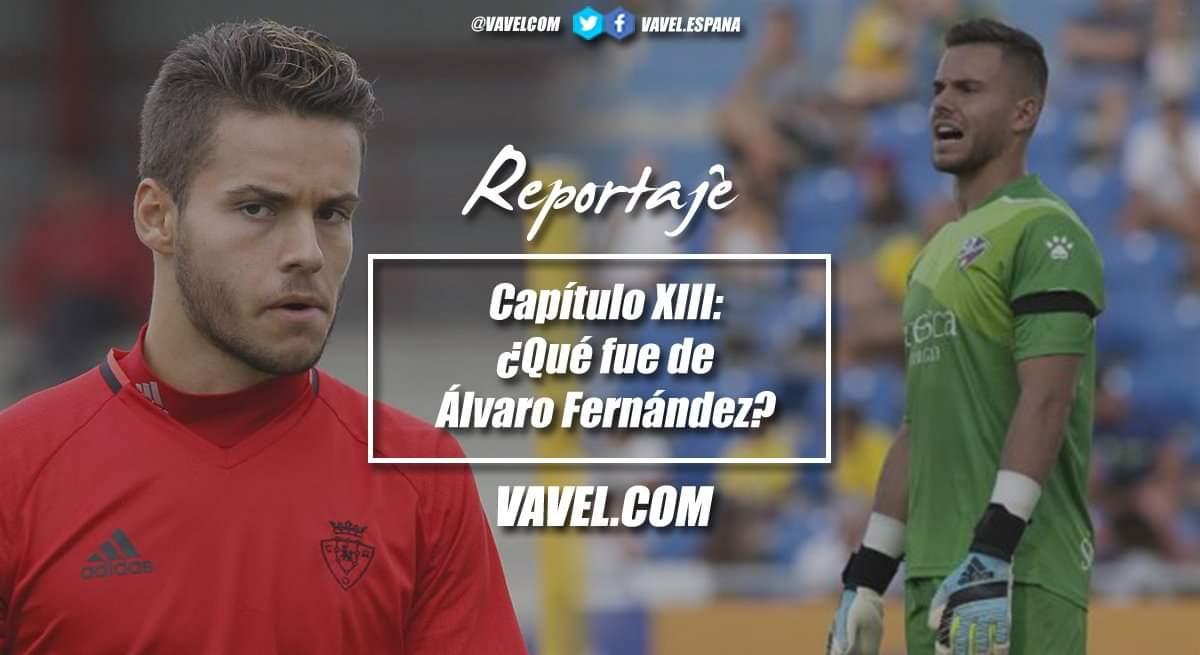 Capítulo XIII ¿Qué fue de Álvaro Fernández?