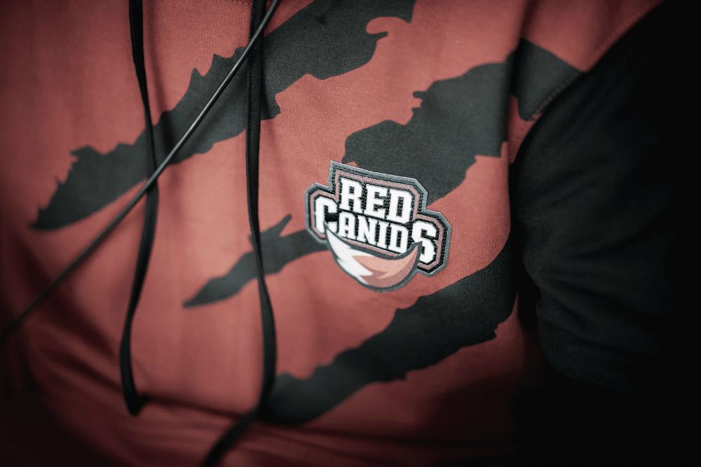 LoL: RED Canids anuncia novas contratações