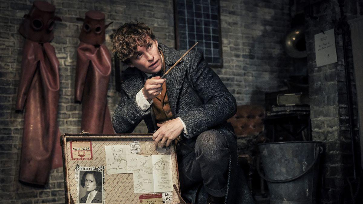 5 cosas a recordar de la saga Harry Potter para ver Los Crímenes de Grindelwald