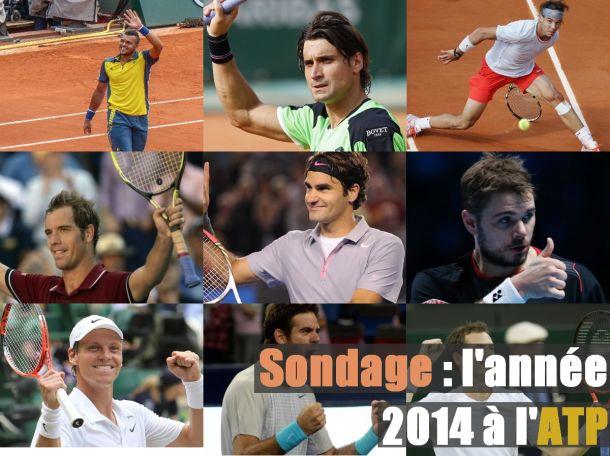 Sondage : la saison ATP 2013