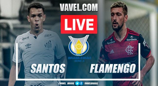 Gol E Melhores Momentos Santos X Flamengo Pelo Campeonato Brasileiro 2020 0 1 30 08 2020 Vavel Brasil