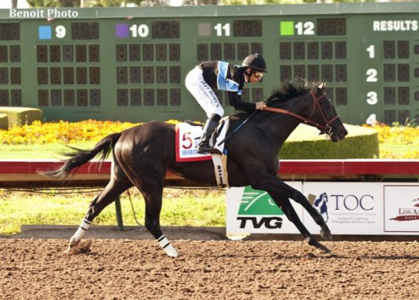 2014 Breeders' Cup Live Results of Horse Racing