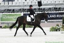 Jeux Équestres Mondiaux : la première médaille française et toute la quatrième journée