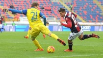 Verso Chievo-Bologna, le scelte dei due allenatori