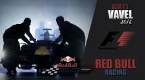 Red Bull Racing: matrimonio por conveniencia