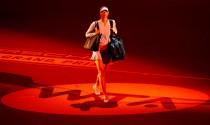 WTA Stoccarda - Il programma: derby russo tra Sharapova e Makarova, in campo anche Kerber e Ka.Pliskova