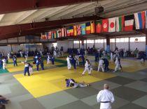 En judo los mejores del mundo veranean en Castelldefels