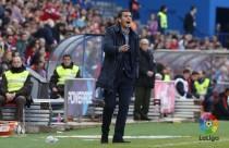 Observando a Javi Gracia ante el Atlético de Madrid