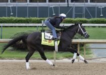 Belmont Stakes Update, May 25: Intense Holiday Injured After Workout