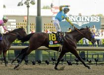 37 Year Triple Crown Drought Ends With Dominant Performance By American Pharoah At Belmont Stakes