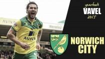 Norwich City's 2015: Alex Neil's yellow army