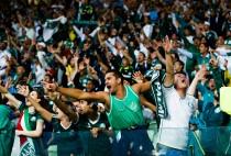 Palmeiras x Ponte Preta: ingressos à venda para o jogo de volta pelo Campeonato Paulista