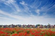 Previa Giro de Italia 2016: 12ª etapa, Noale – Bibione