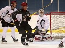 Tucson Roadrunners first ever training camp has begun