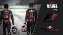 Toro Rosso: la juventud viene pisando fuerte