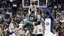 Unicaja - RETAbet Gipuzkoa Basket: seguir creciendo en busca de la sorpresa