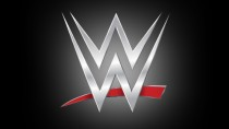 WWE Release Financial Results