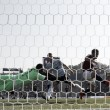 Bologna, terza vittoria di fila. Le parole di Verdi e Donadoni dopo il 2-1 alla SPAL