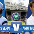 Score Murray vs Seppi in 2015 Wimbledon Third Round (3-1)
