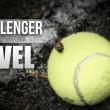 Challenger Tour 2016: semana 38