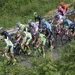 Previa   Giro de Italia 2015: 7ª etapa, Grosseto - Fiuggi