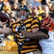 Steelers y Bengals vuelven a verse las caras