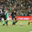 La afición opina: ¿Debe el Real Betis renovar a Rubén Castro?