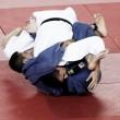 Con ocho deportistas, Colombia hará presencia en el mundial de Judo