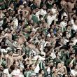 Palmeiras é punido por sete jogos pelo STJD após briga de torcedores em partida contra Sport