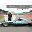 Mercedes AMG Petronas F1 Team: 2017 Preview