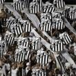 Santos x Palmeiras: confira informações e valores dos ingressos