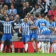 Brighton & Hove Albion 1-0 Newcastle United: Seagulls end Magpies' winning streak