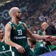 Turkish Airlines Euroleague - Fenerbahce e Panathinaikos superano Maccabi e Stella Rossa