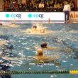 Pallanuoto, World League: grande Italia, battuto il Montenegro