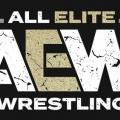 Todo sobre All Elite Wrestling del mes de enero