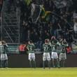 Angers 0-1 ASSE : Sainté l'emporte dans la douleur !