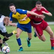 Saint Albans City sign Watford's Harvey Bradbury on loan